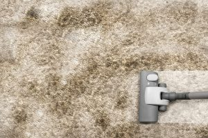 Kitchen Carpet Spill carpet cleaning Idaho falls